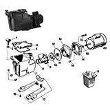Hayward Super Pump Hand Knob Kit SPX1600PN