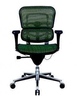 Ergohuman Mid-Back mesh chair ME8ERGLO by Raynor - Many Mesh Colors!