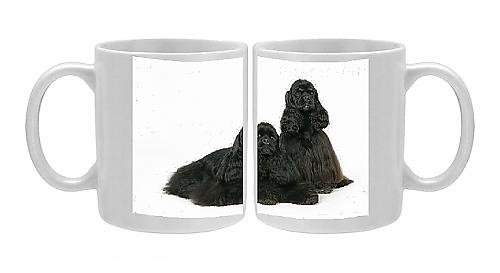 Photo Mug Of Dogs. Black And Black And Tan American Cocker Spaniels front-553079