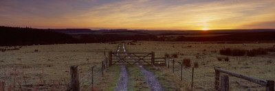 Panoramic Moorsyorkshireenglandunited Kingdom Images20x60 Tracklandscapenorth York
