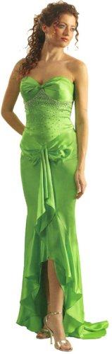 cinderella dress divine
