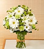 Flowers by 1800Flowers - Serene Green - Medium