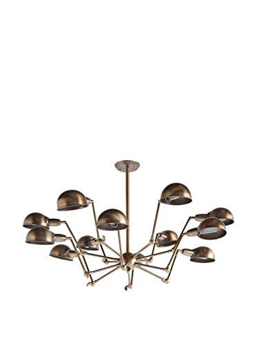 Applied Art Concepts Ursidae Chandelier, Brass