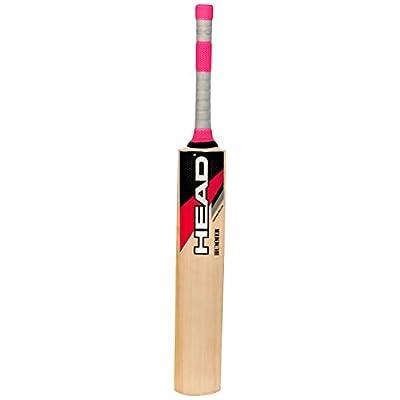 Head Hummer Kashmir Willow Cricket Bat