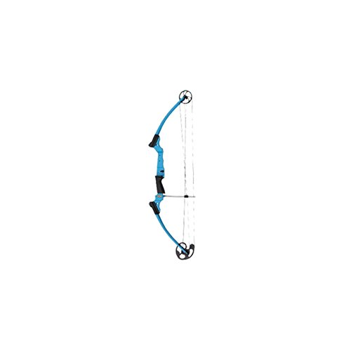 Genesis Bow Kit, Right Handed, Blue Raspberry (Archery Starter Kit compare prices)