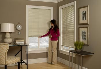 New Products The Blinds Review