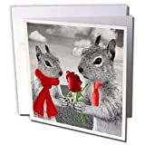 Doreen Erhardt Love and Romance - Squirrel Couple in Love with Red Rose Black and White Photograph - Greeting Cards-6 Greeting Cards with envelopes