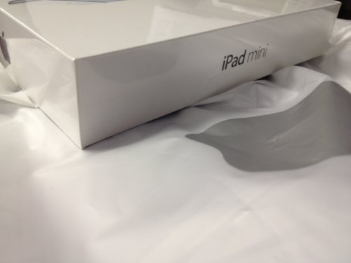 iPad mini with Wi-fi 16gb - Black & Slate
