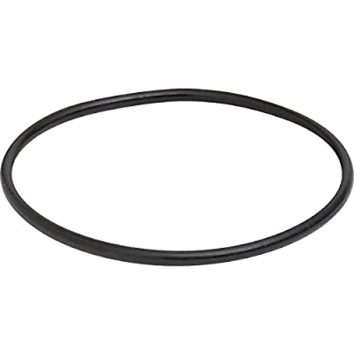O-Ring for Pool Strainer Pot Lid For Pentair Challenger Pump - Mfg # 350013