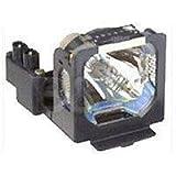 BenQ Multimedia Projector Replacement Lamp (5J.J2G01.001)