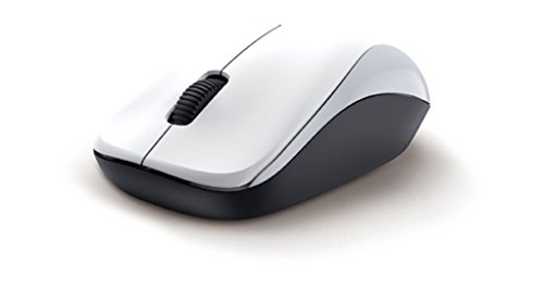 genius-nx-7000-raton-rf-inalambrico-blueeye-office-color-blanco-ambidextrous-usb