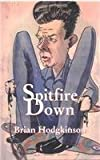 img - for Spitfire Down: The POW Story. The Memoir of an RCAF Spitfire Pilot in the Second World War book / textbook / text book
