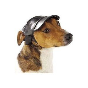 Dog Faux Leather Cap Large 7