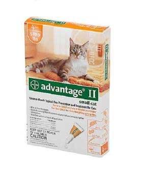 Bayer Advantage II Orange 4-Month Flea Control for Cats 5-9 lbs.