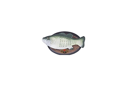 Big Mouth Billy Bass the Motion Activated Singing Sensation (Singing Bass Fish compare prices)