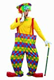 Adult hooped clown fun circus fancy dress costume