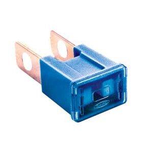 pal male auto fuse 100 amp   dark blue amazon co uk