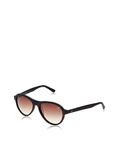Web Gafas de Sol WE0128 (54 mm) Havana
