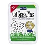 Gimborn Gimpet Cat Grass -- 5.25 oz