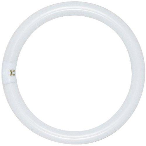 Satco S6509 4100K 20-Watt 4 Pin T9 Circline Lamp, Cool White