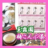 玉露園 梅こんぶ茶 個包装タイプ(46包入×3)