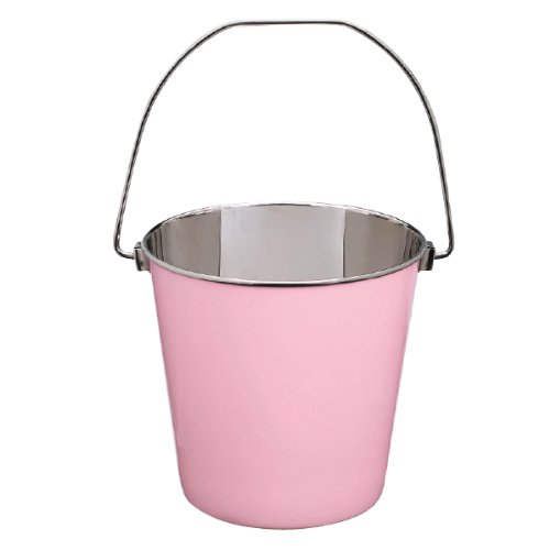 Proselect Stainless Steel Heavy Duty Pail, 9-Quart, Pink front-571299