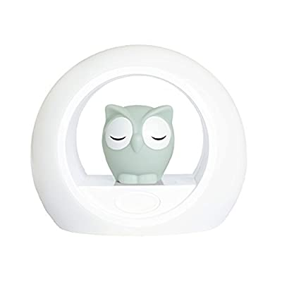 Zazu LOU Voice Activated Night Light Lamp by Zazu that we recomend personally.