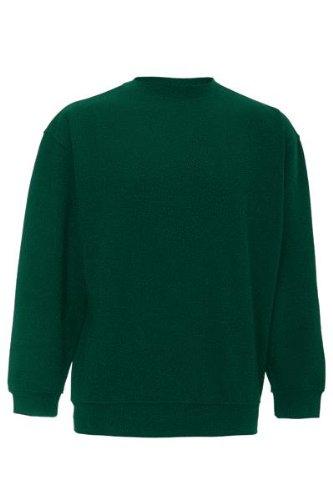 dickies-sweatshirt-bottle-green-xx-large