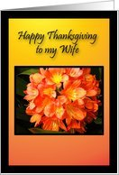 Wife Happy Thanksgiving, Beautiful Golden Orange Flower Greeting Card Card