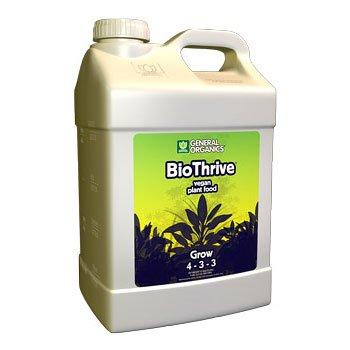 Best Calcium Brand