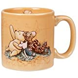 WALT DISNEY WINNIE THE POOH HUNDRED ACRE WOOD MERCURY MUG IN ORANGE
