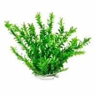 0511645777-AQUATOP-anacharis-like-en-plastique-pour-aquarium-508-cm-Hauteur