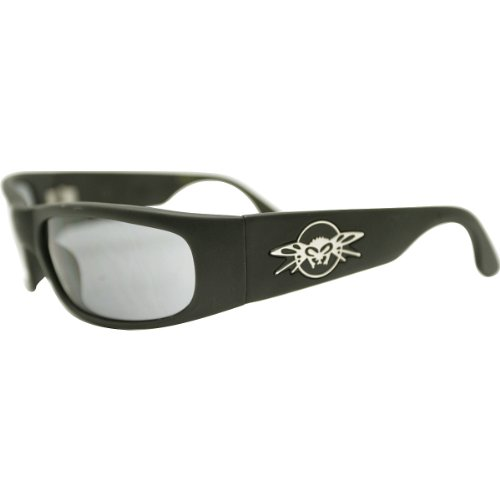 Black Flys Sunglasses 2017