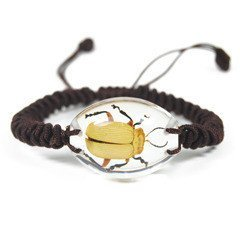 REALBUG Black Feet Beetle Bracelet, Clear