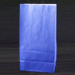 "Blue Paper Sack Lunch Bags [Pack of 40] 5.3125"" Wide x 10"" High x 3.25"" Deep - 1"