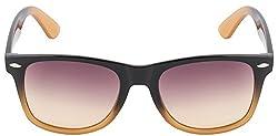 Monsoon Special 4301 Black Brown Brown Gradient Wayfarer Sunglasses