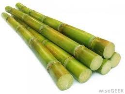Fresh Sugar Cane (5lb)