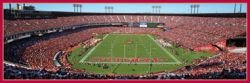 NFL San Francisco 49ers Panoramic Stadium Puzzle (1000-Piece) at Amazon.com