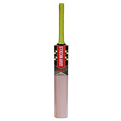 Gray Nicolls POWERBOW5-SMASHER Kashmir Willow Cricket Bat