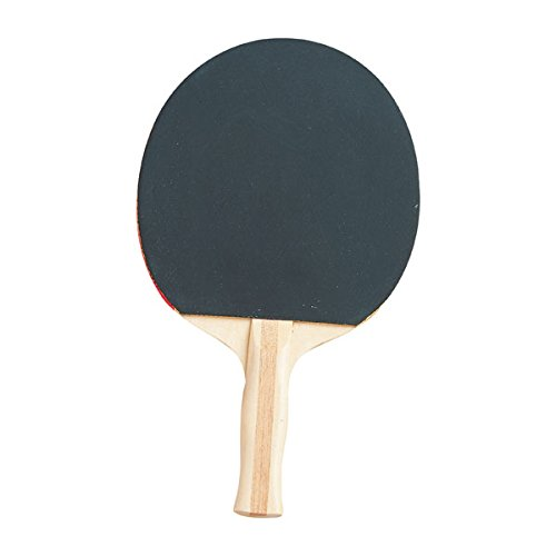 Champion Sports PN9 Table Tennis Paddle (4 Star Ping Pong Balls Champion compare prices)