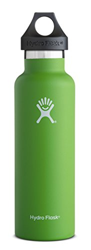 Hydro Flask 24 oz Vacuum Insulated Stainless Steel Water Bottle, Standard Mouth w/Loop Cap, Kiwi (Water Bottle 24 Oz compare prices)