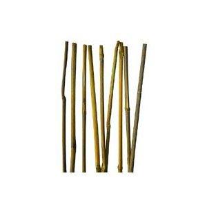3ft Bamboo Stakes 25 Garden Stakes Patio Lawn Garden