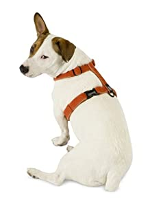 Planet Dog Cozy Hemp Adjustable Harness Orange Small