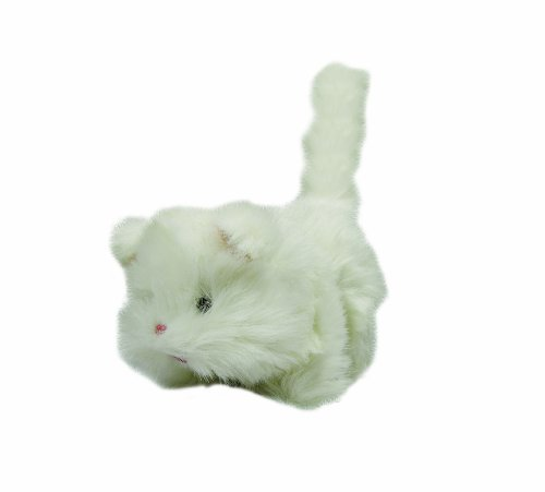 Flaghouse Switch Adapted Kitty Cat front-836523