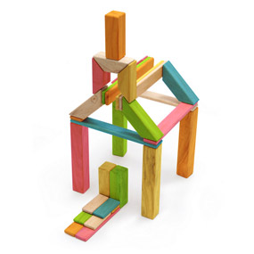 Tegu 40 Piece Explorer Set Tints Schoolhouse