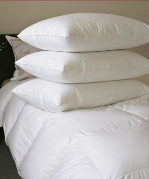 Soft White Goose Down Super Standard Pillow