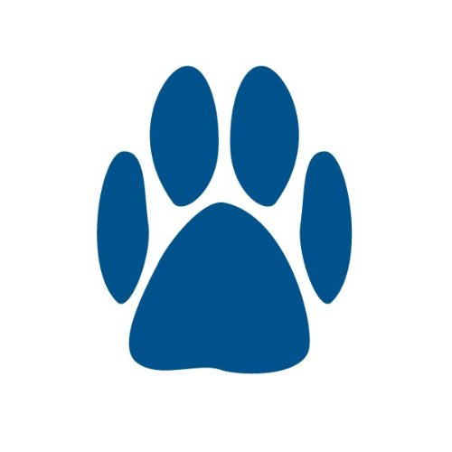 Paw Print Stencil For Painting Paw Prints On Walls And Furniture In A Pet Spa, Doggy Daycare, Classroom, Or Bedroom front-916049