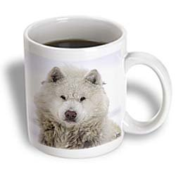 Canadian Eskimo Dog Hudson Bay Churchill Northern Canada - 11oz Mug