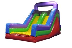 Inflatable Interactive Rock Climb Dry Double Lane Slide Includes 1.5 Hp Blower and Free Shipping