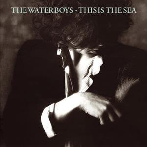 The Waterboys - This Is the Sea-Remastered - Zortam Music
